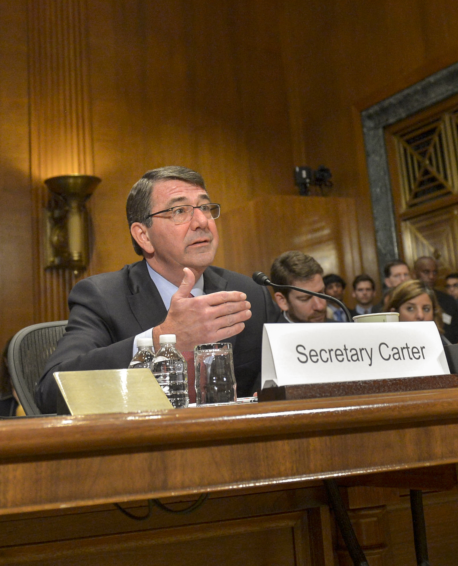 Defense Secretary Ash Carter speaking at a briefing.